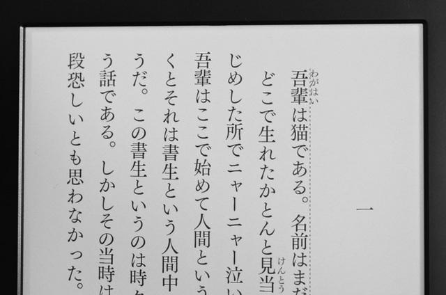 筑紫明朝.jpg