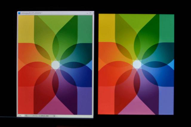 iPad-Eizo-hana.jpg